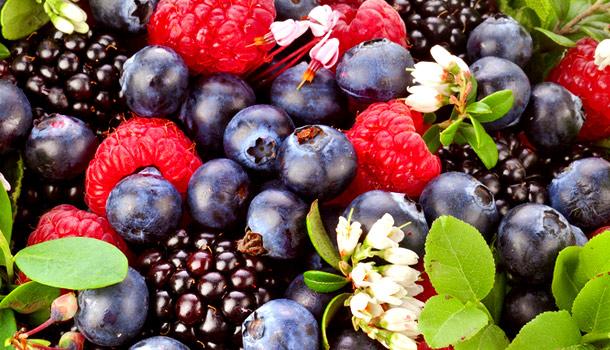 Fructele de padure – Te mentin concentrat