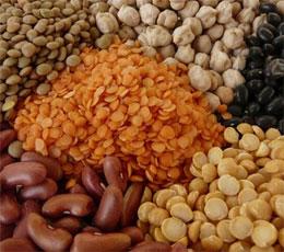 Diferenta dintre proteine de origine animala si vegetala