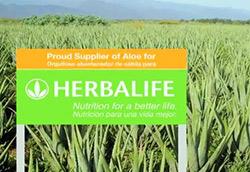 despre herbalife